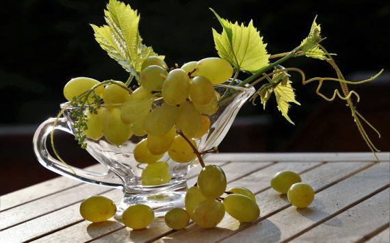 W jaki sposób przycinać winogrona